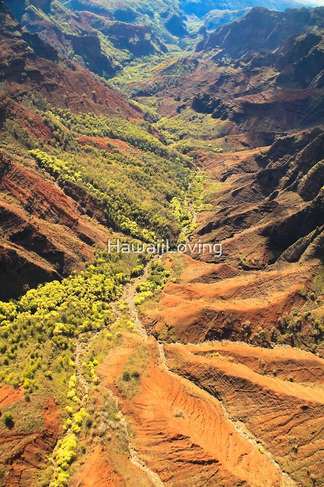 Waimea Canyon- Kauai by HawaiiLoving