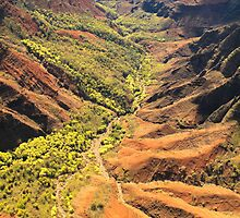 Waimea Canyon- Kauai by HawaiiLoving