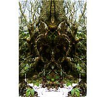 the tree spirit Photographic Print