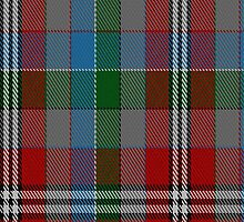01994 City of Edinburgh (2001) District Tartan Fabric Print Iphone Case by Detnecs2013