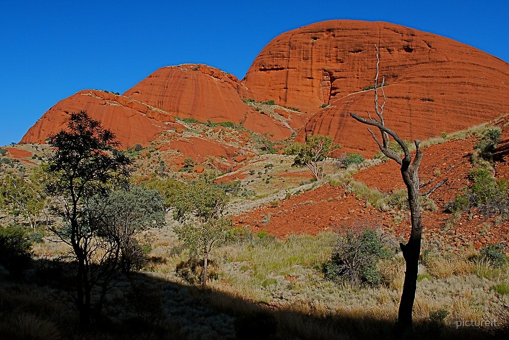 Red Rock by pictureit