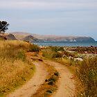 Coastal track by pictureit