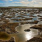 Low Tide.  by pictureit