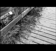Cedar Town Beach Wooden Pier Detail - Mount Sinai, New York by © Sophie W. Smith