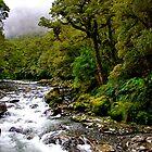 A River Run Through It by pictureit