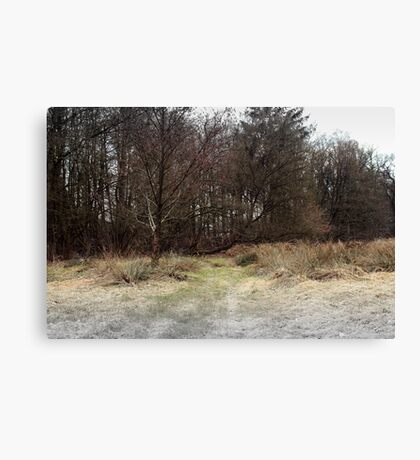 Searching for the truth Canvas Print