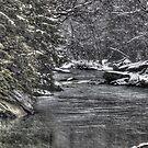 winter's last gasp by Paul Kavsak