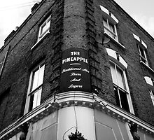 The Pineapple Pub Kentish Town London by lanesloo