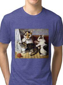 Naive Cat Painting Tri-blend T-Shirt