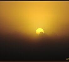 Foggy Sunrise by ccmerino