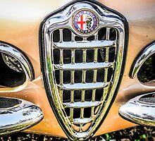1954 Alfa Romeo Spider Italian Sports Car by Chris L Smith