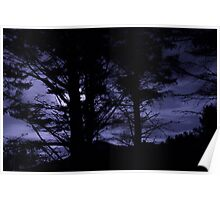 Moon Night Trees Sky Poster