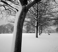 Snow Tree Regents Park by lanesloo