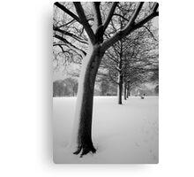 Snow Tree Regents Park Canvas Print