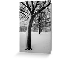 Snow Tree Regents Park Greeting Card