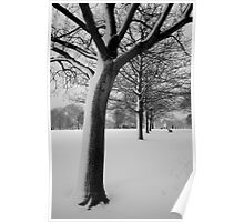 Snow Tree Regents Park Poster