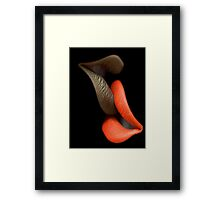 Lip To Lip Framed Print