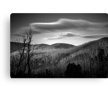 Gums of Grey Canvas Print