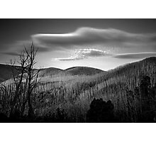 Gums of Grey Photographic Print