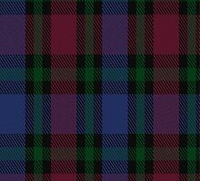 01006 Clark Clerk(e) Clan/Family Tartan Fabric Print Iphone Case by Detnecs2013