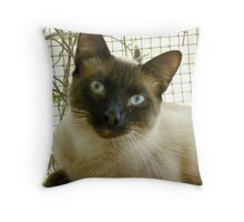SUSHI - MELT MY HEART Throw Pillow