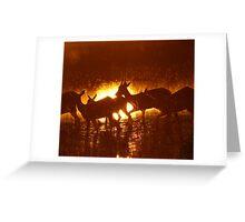 A Delta Sunrise Silhouette ! Greeting Card
