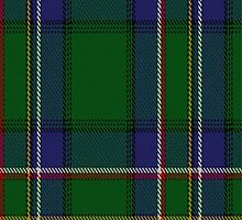01036 Cockburn (Old Pattern) Clan/Family Tartan Fabric Print Iphone Case by Detnecs2013