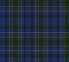 01037 Cockburn Blue Clan/Family Tartan Fabric Print Iphone Case by Detnecs2013