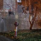 Fire Hydrant by sedge808