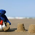 Blue Bear's day at the beach! by Kerry McQuaid