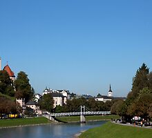 Salzach River View by phil decocco