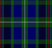 01042 Colgan Tartan Fabric Print Iphone Case by Detnecs2013