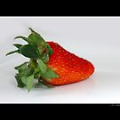Fragaria x Ananassa - Strawberry by © Sophie Smith