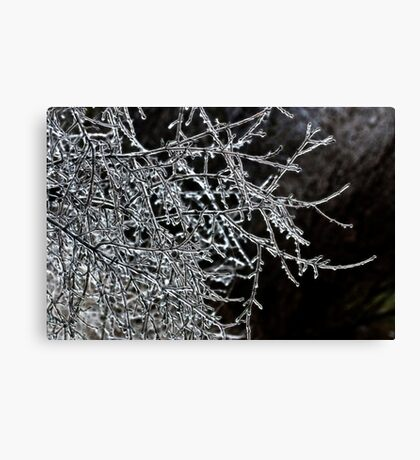 Branches Of Bling Canvas Print