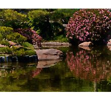 Spring in the Japanese Garden Photographic Print