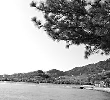 mer du Japon (B&W) view 2 by parisiansamurai