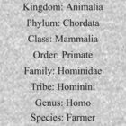 Biological Classification - Farmer by stuwdamdorp