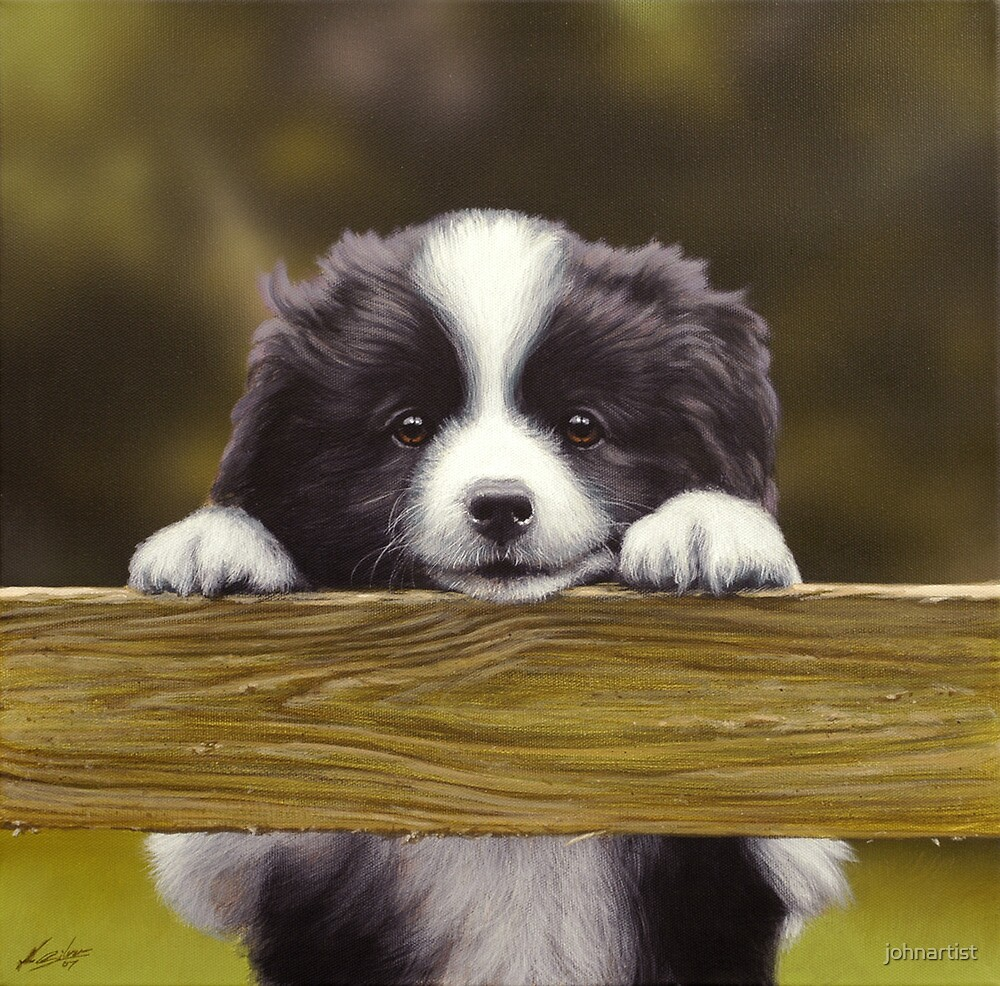Over the garden fence by John Silver