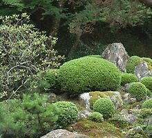 japanese traditional garden view 1 by parisiansamurai