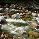 Mossman Gorge by Joel  Haldane