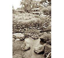 japanese traditional garden view 2 Photographic Print