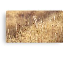 dancing in grass skirts Canvas Print