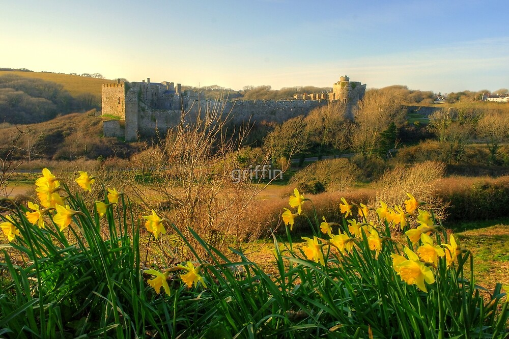 Manorbier Castle, Pembrokeshire by griffin
