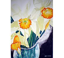 DAFFODILS IN A VASE Photographic Print
