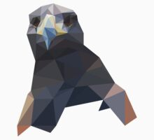 Hawk - Low Polygon Illustration by Jack Craze