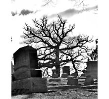 old and still standing...well some of us. Photographic Print