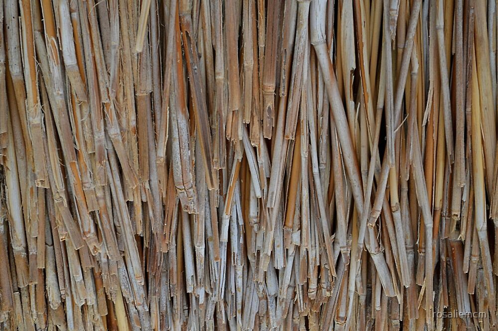 Thatched Roof by rosaliemcm