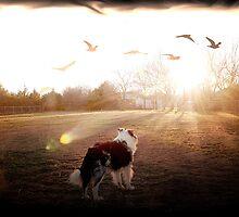 Luke Skye Walker by Glenna Walker