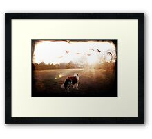 Luke Skye Walker Framed Print