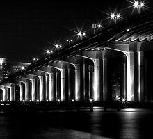 Fuller Warren Bridge by Dani Gee Phokus & [x]Pose